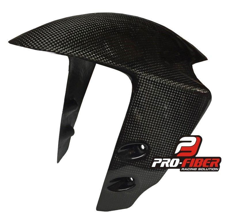Carbon_front_fender_Ducati_Panigale_889_1198