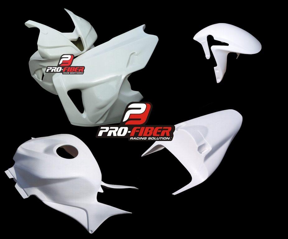 Complete_Race bodywork_Honda_CBR_600RR_2009_front fender SS_JPG