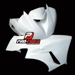 Kawasaki_ZX6_2009_race_bodywork