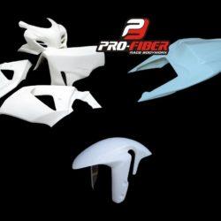 Suzuki_GSXR_1000_09_race_bodywork_SS_tail