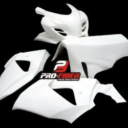 Suzuki_GSXR_1000_09_race_front_fairing