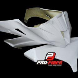 race_front_fairing_Kawasaki_ZX10-2011